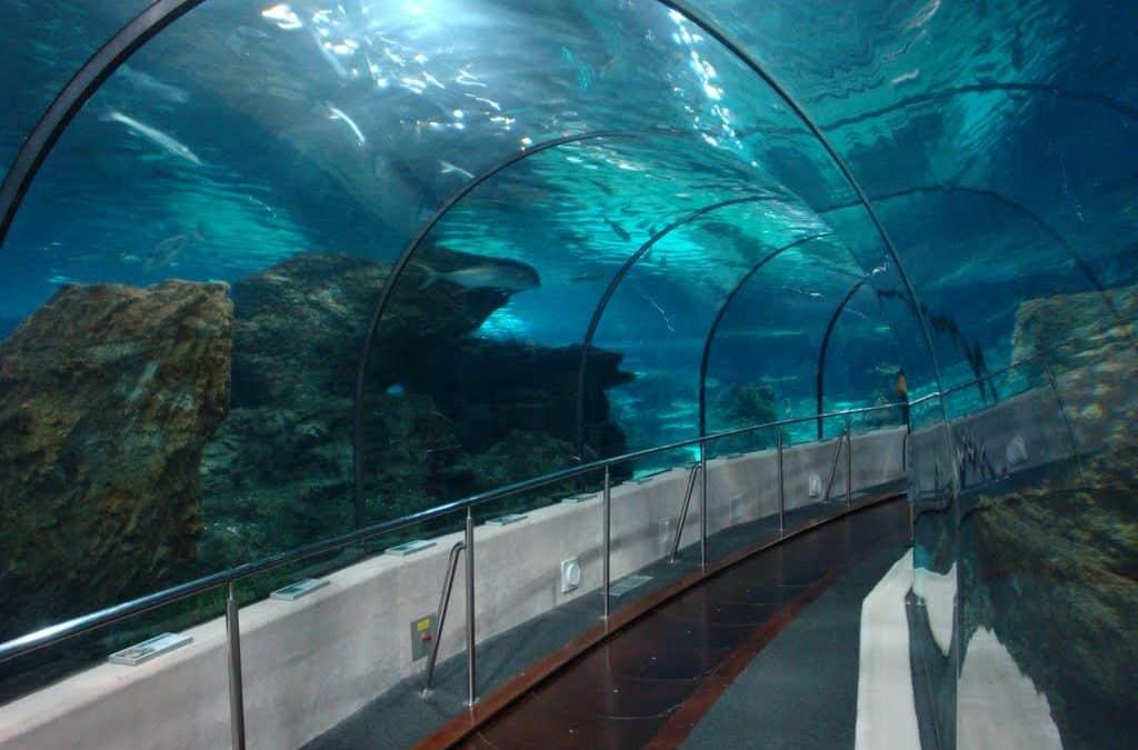 Barcelona Aquarium – Spain