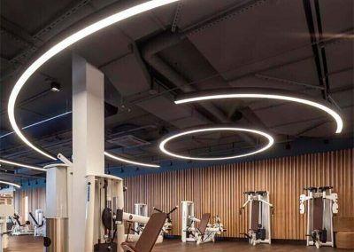 corvus_system_aplicacion_gym